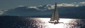 D Schein Ausbildung Schweiz - günstig Segeln lernen am Zürichsee - Segelkurs für Anfänger Zürich