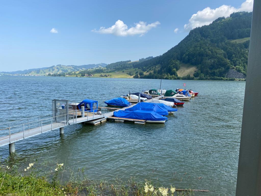 Segelschule Shilsee - günstig segeln lernen - Segelkurs Schweiz